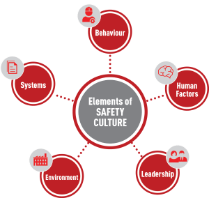 Elements of Safety Culture DCU
