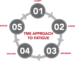 TMS-Approach-to-Fatigue